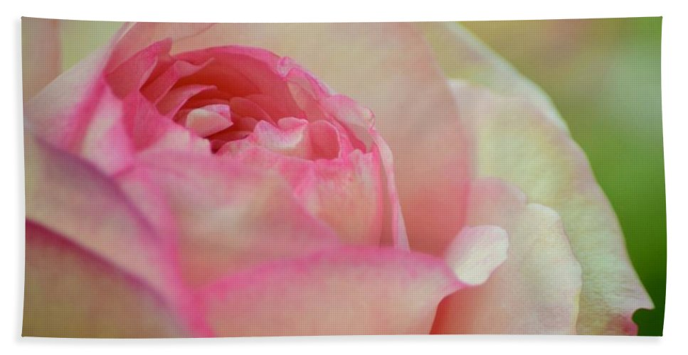 Rose Bath Sheet featuring the photograph Imitation Love - Paper Rose by Debra Banks