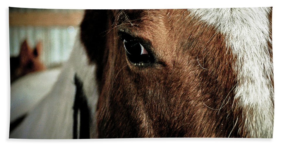Clay Hand Towel featuring the photograph In A Horse's Eye by Clayton Bruster