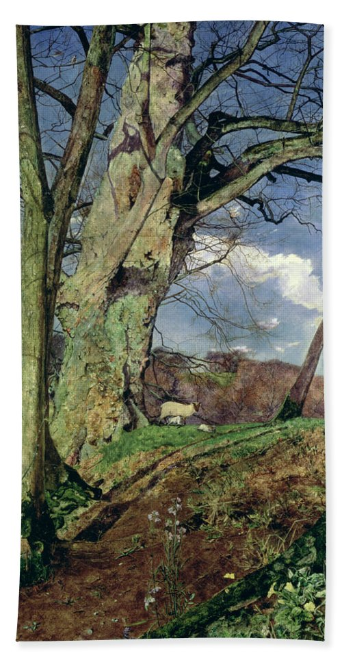 In Early Spring: A Study In March (oil On Canvas) By John William Inchbold (1830-88) Hand Towel featuring the painting In Early Spring by John William Inchbold