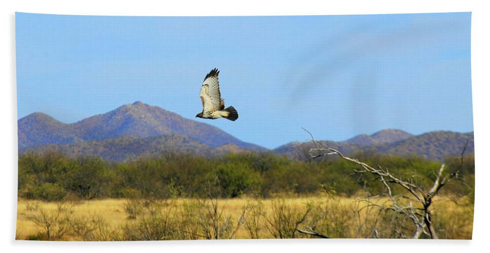 Large Hand Towel featuring the photograph In Flight 2 by Teresa Stallings