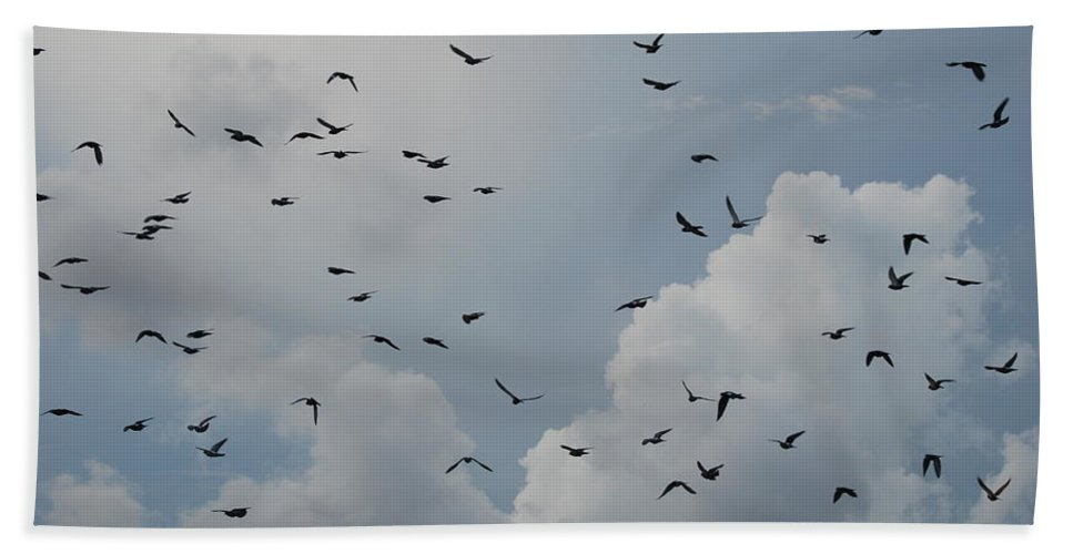 Birds Hand Towel featuring the photograph In Flight by Rob Hans