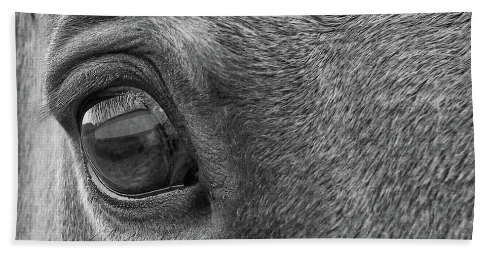 Horse Bath Sheet featuring the photograph In Italian Cavallo View by JAMART Photography