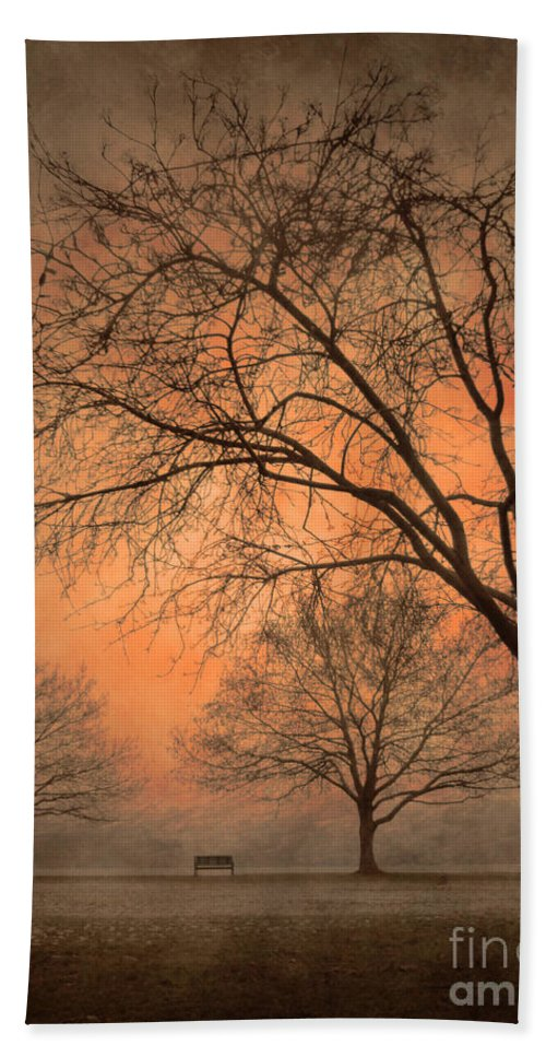 Trees Hand Towel featuring the photograph In The Distance by Tara Turner