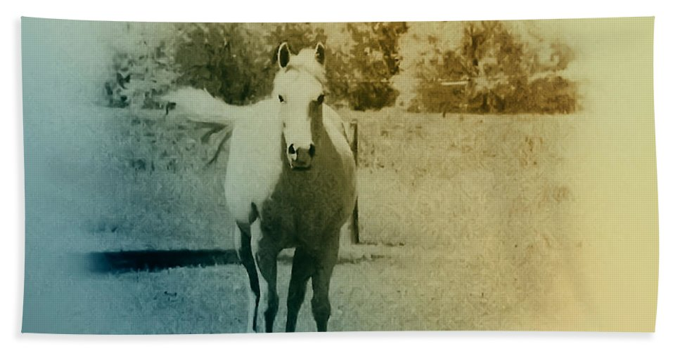 Horses Bath Sheet featuring the photograph In The Meadow by Bill Cannon