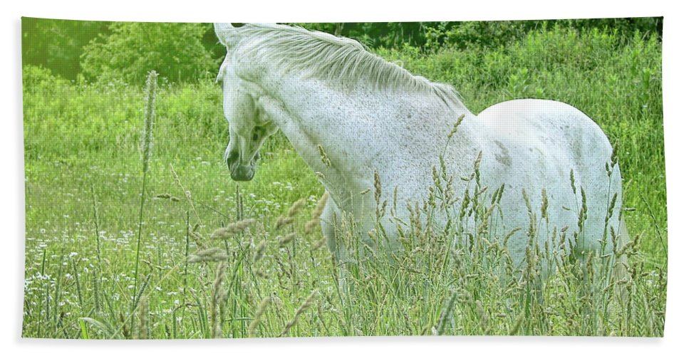 Horse Bath Sheet featuring the photograph In The Meadow by JAMART Photography