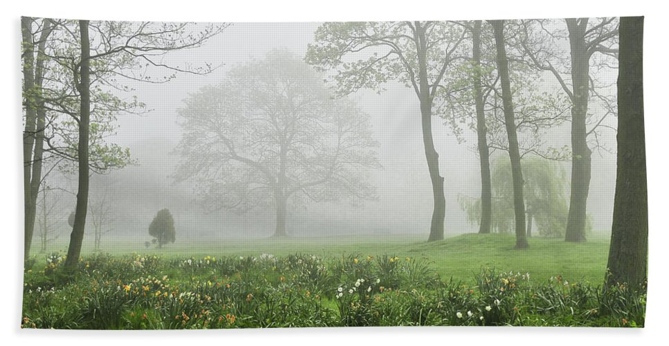 Fog Hand Towel featuring the photograph In The Morning10 by Svetlana Sewell