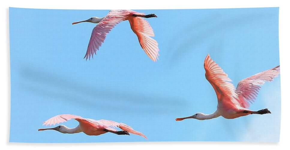 Bird Hand Towel featuring the photograph In The Pink by John Absher