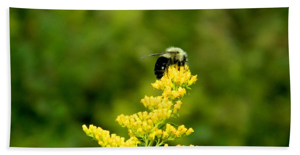 Bee Hand Towel featuring the photograph In The Woods by Arlane Crump