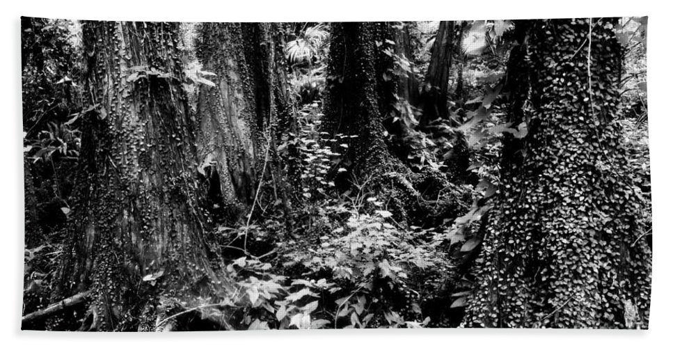Forest Hand Towel featuring the photograph In Thick by David Lee Thompson