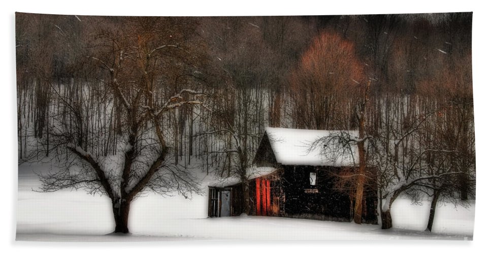 Winter Hand Towel featuring the photograph In Winter by Lois Bryan