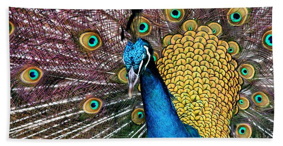 Aloha Hand Towel featuring the photograph Indian Blue Peacock by Sharon Mau