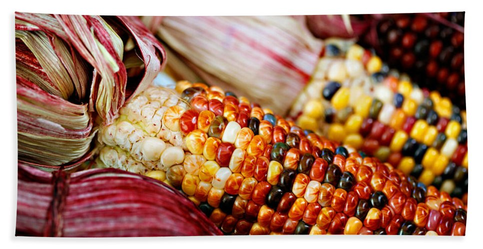 Corn Hand Towel featuring the photograph Indian Corn by Marilyn Hunt