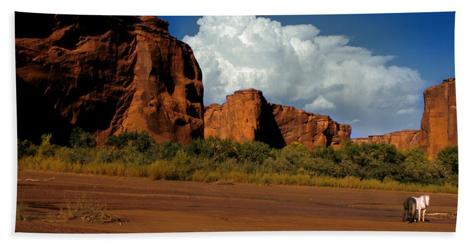 Horses Bath Towel featuring the photograph Indian Ponies In The Canyon by Jerry McElroy