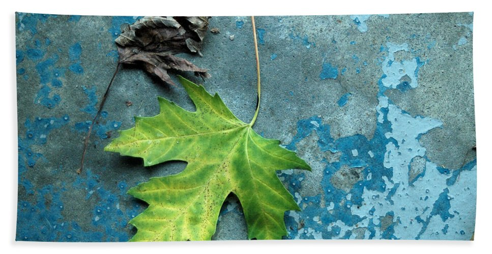 Leaves Bath Sheet featuring the photograph Inevitable by Trish Hale