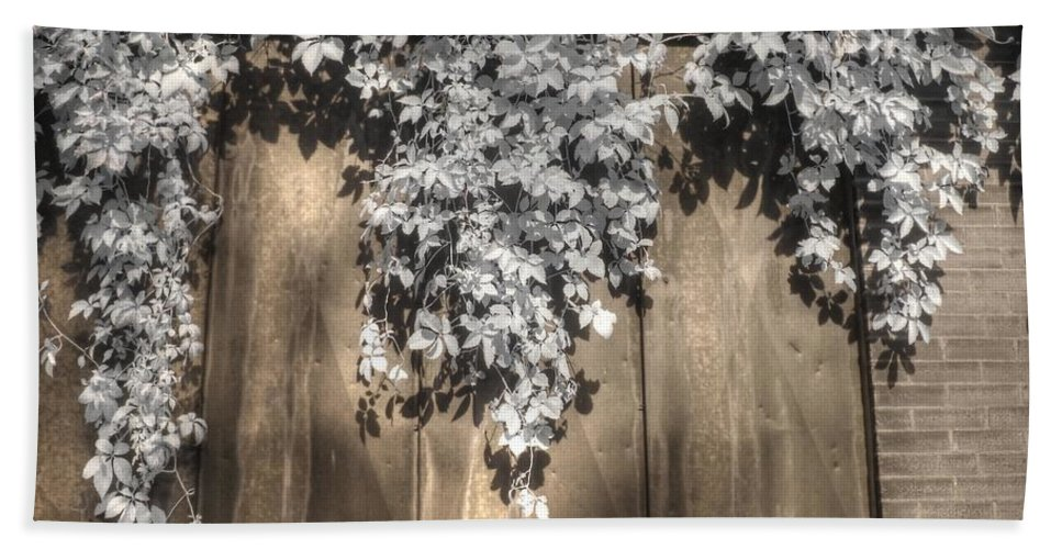 Infrared Bath Sheet featuring the photograph Infrared Botanical Sepia by Jane Linders