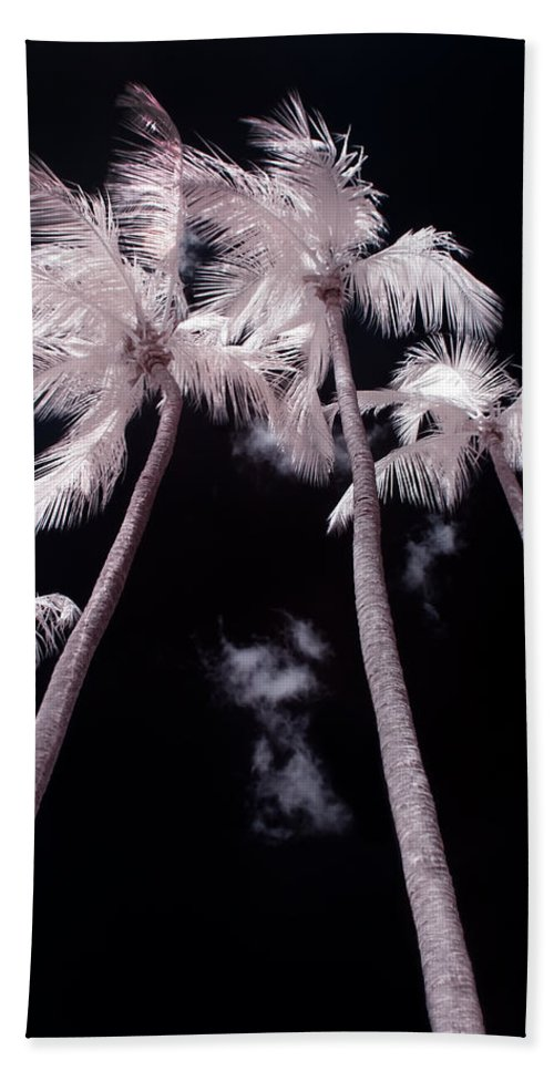 3scape Photos Bath Sheet featuring the photograph Infrared Palm Trees by Adam Romanowicz