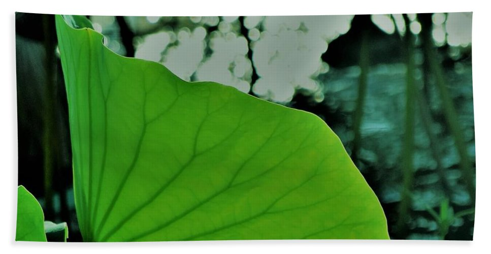Water Lily Pa Pad Bath Sheet featuring the photograph Inner Beauty by John Glass