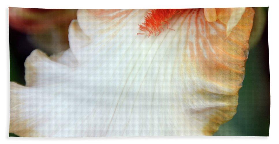 Iris Bath Sheet featuring the photograph Into Iris by Angelina Tamez