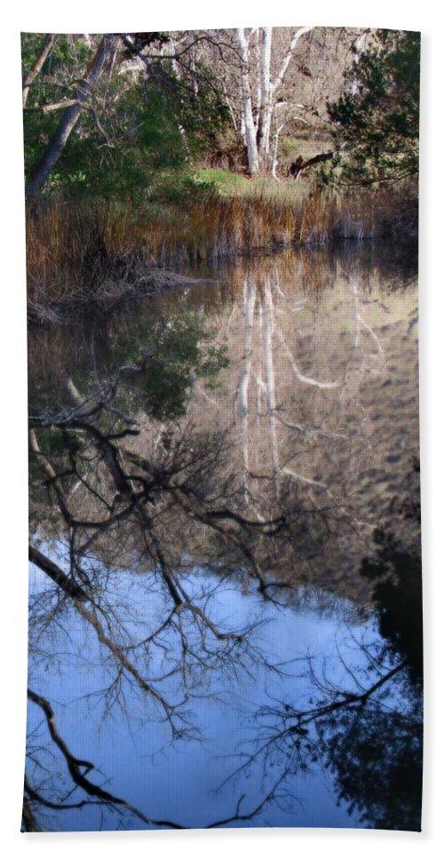 Landscape Bath Sheet featuring the photograph Into The Light by Karen W Meyer