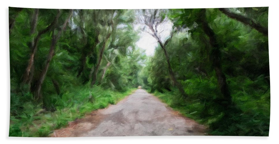 Santa Maria Bath Sheet featuring the photograph Into The Woods by Jonathan Nguyen