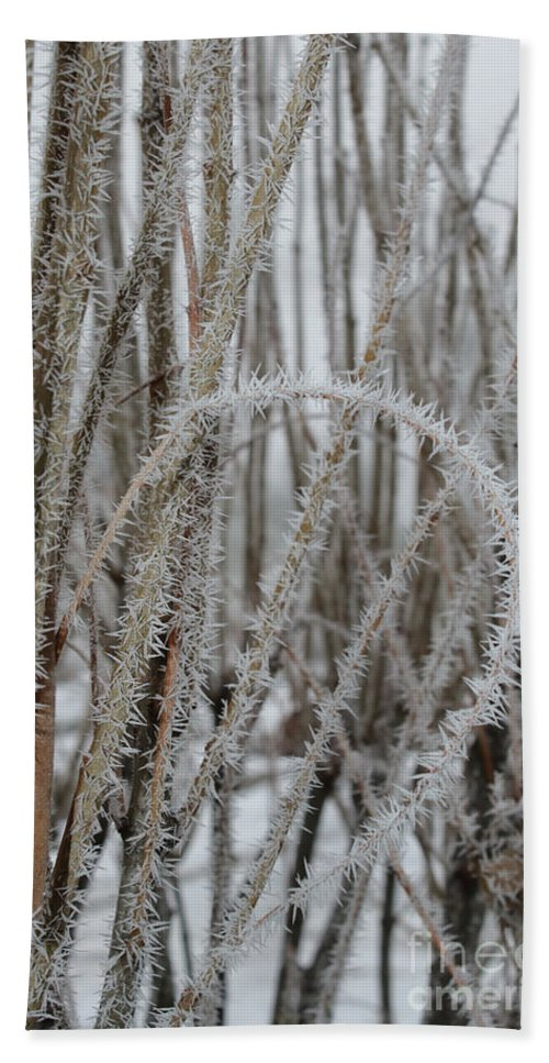 Hoarfrost Bath Towel featuring the photograph Intriguing Winter Frost by Carol Groenen