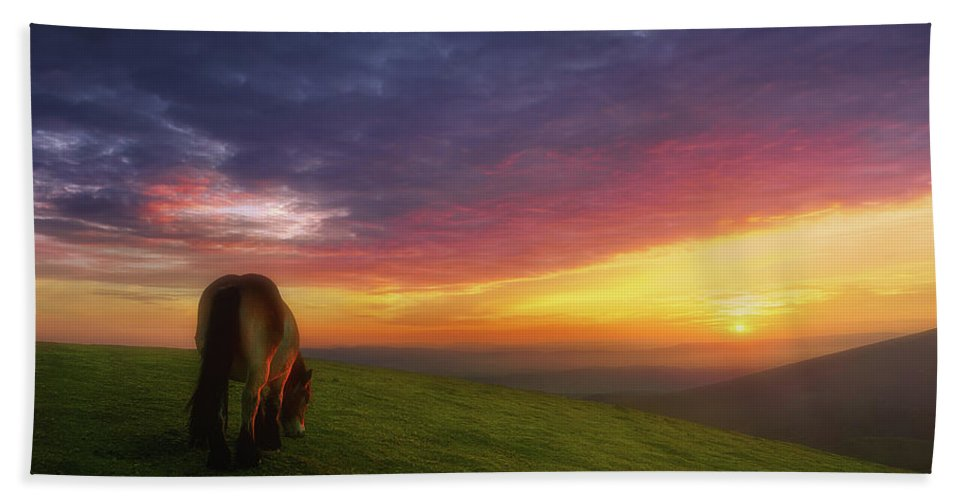Horse Hand Towel featuring the photograph Ipergortako Zaindaria by Mikel Martinez de Osaba