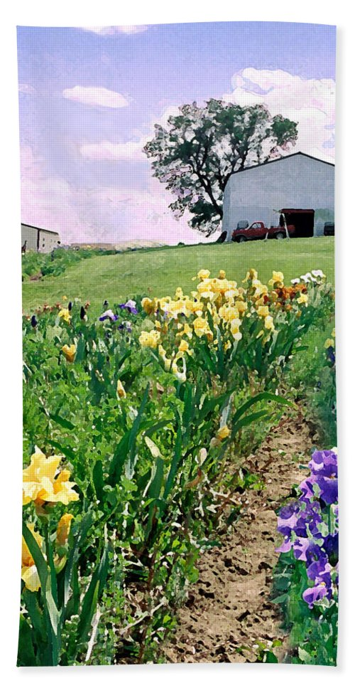 Landscape Painting Hand Towel featuring the photograph Iris Farm by Steve Karol