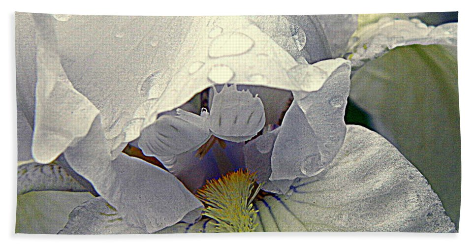 Iris Hand Towel featuring the photograph Iris With A Bonnet Series 7 by Kathy Barney