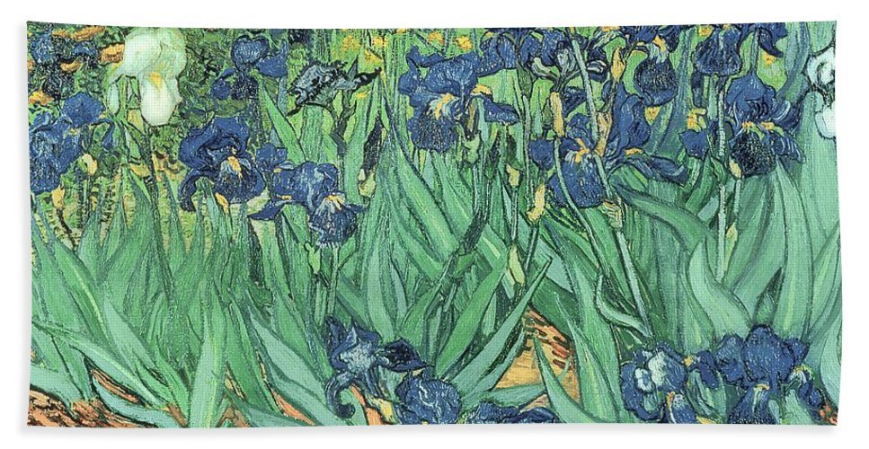 Irises Bath Towel featuring the painting Irises by Vincent Van Gogh