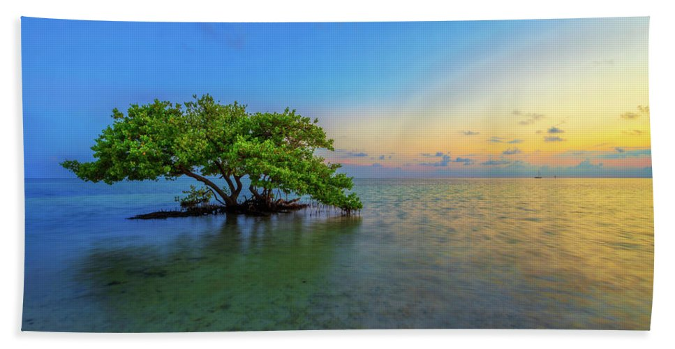 Mangrove Bath Towel featuring the photograph Isolation by Chad Dutson