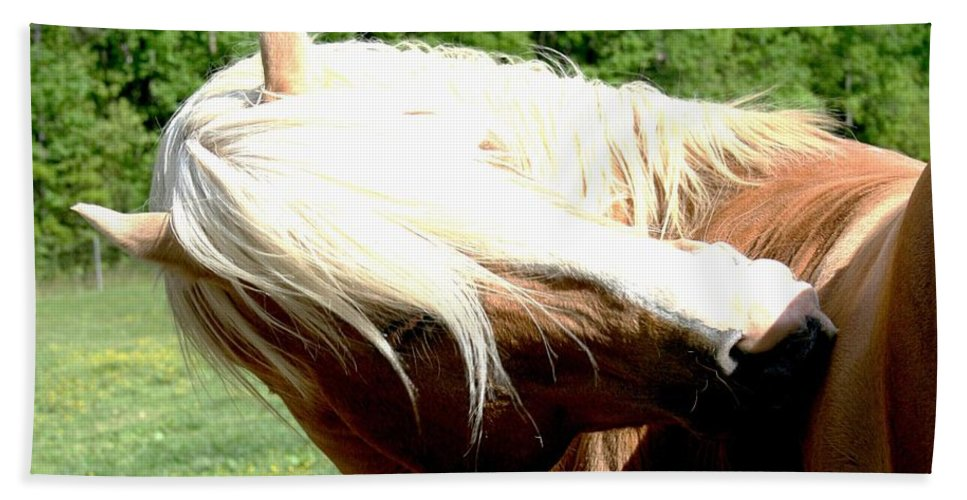 Horse Bath Towel featuring the photograph Itchy Spot by Tina Meador