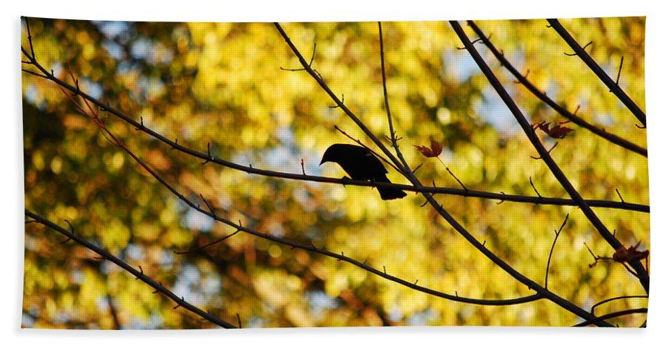 Bird Hand Towel featuring the photograph It's A Bird by Lori Tambakis