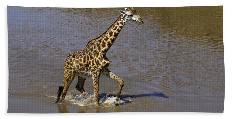 Africa Hand Towel featuring the photograph It's Only Ankle Deep by Michele Burgess
