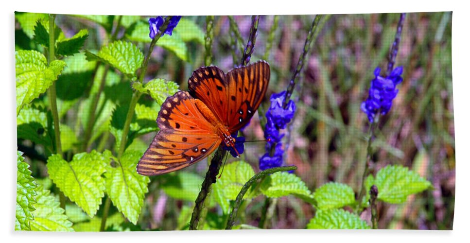 Butterfly Bath Sheet featuring the photograph Its Summer by Susanne Van Hulst