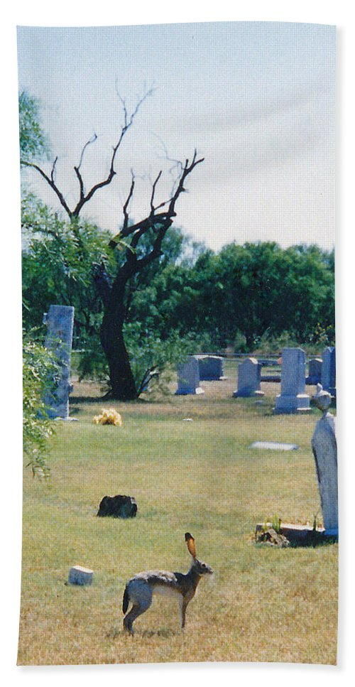 Rabbit Cementery Tombstones Hand Towel featuring the photograph Jack Rabbit In Cementery by Cindy New