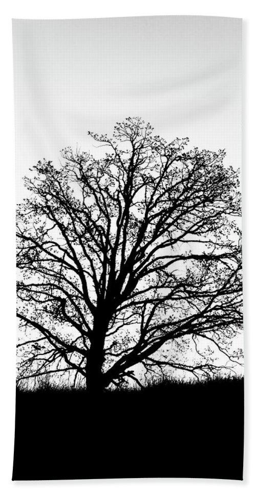 Tree Hand Towel featuring the photograph Jackson By Pete Ramirez by Peter Ramirez