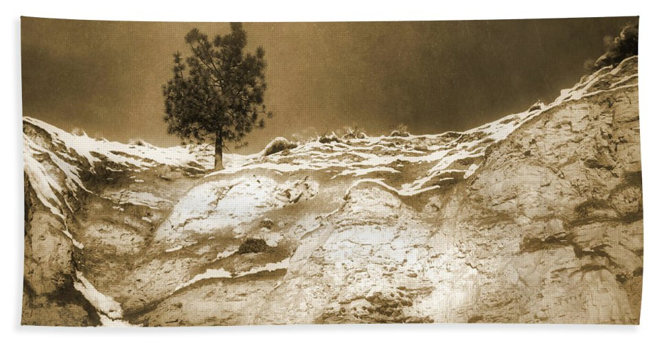 Sepia Hand Towel featuring the photograph January 7 2010 by Tara Turner