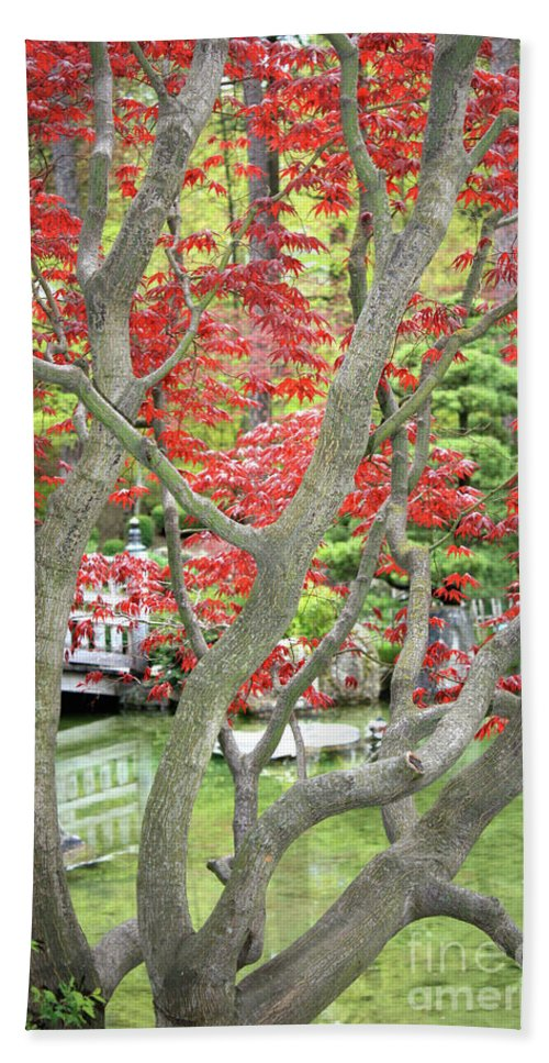 Japanese Garden Bath Sheet featuring the photograph Japanese Maple Tree And Pond by Carol Groenen