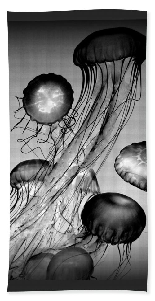 Monochrome Hand Towel featuring the photograph Jellyfish In Monochrome by Mariecor Agravante