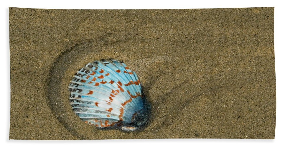 Acrylic Bath Sheet featuring the painting Jewel On The Beach by Mike Robles