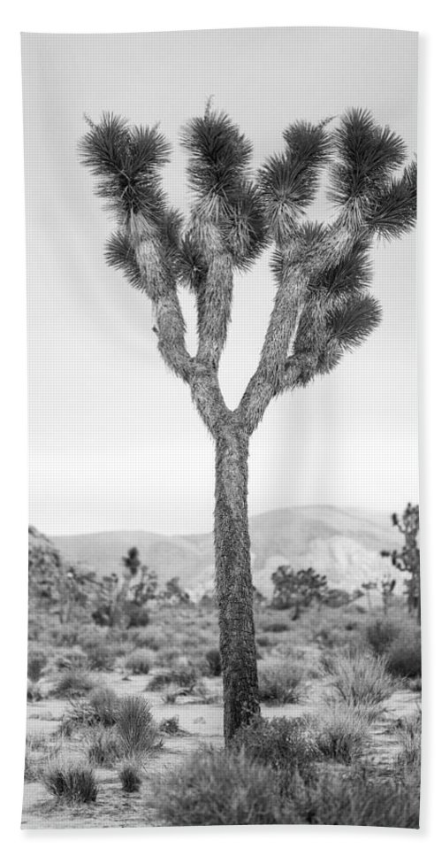 California Hand Towel featuring the photograph Joshua Tree Before Storm by Alex Snay