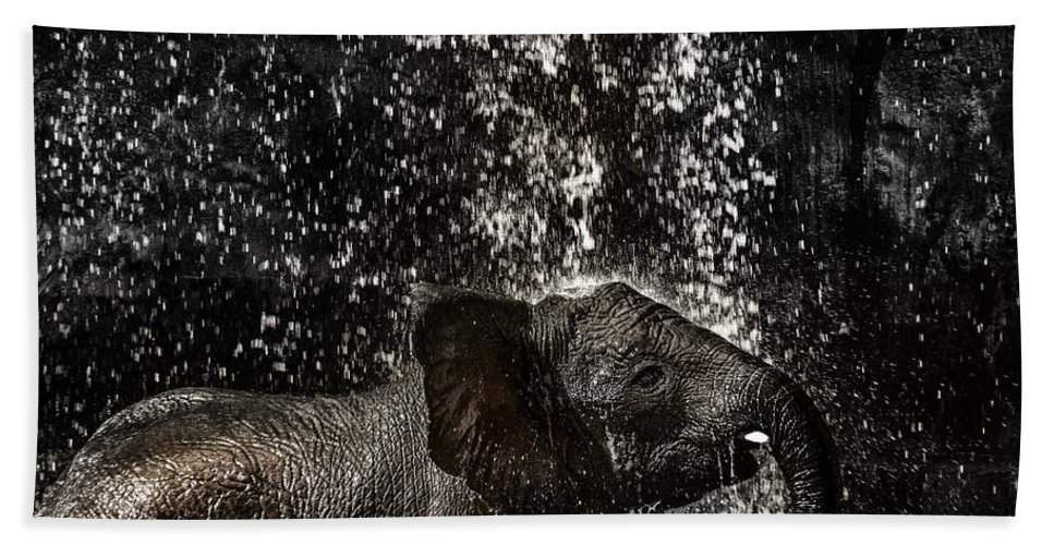 Elephant Hand Towel featuring the photograph Joy Of Life by Edgar Laureano