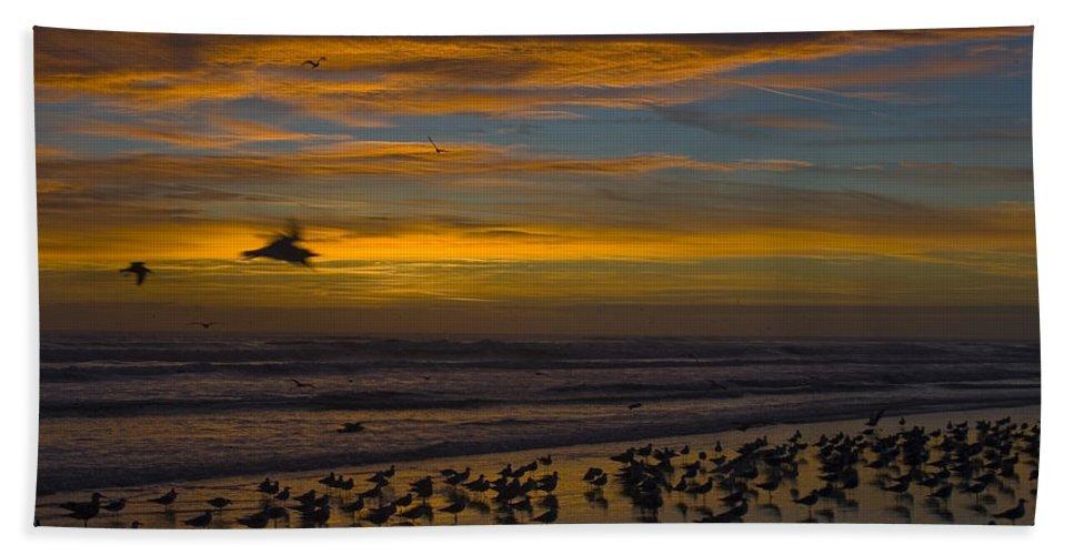 Beach Morning Sunrise Ocean Bird Birds Seagulls Gull Gulls Sand Water Wave Waves Cloud Sky Hand Towel featuring the photograph Joyful Gathering by Andrei Shliakhau