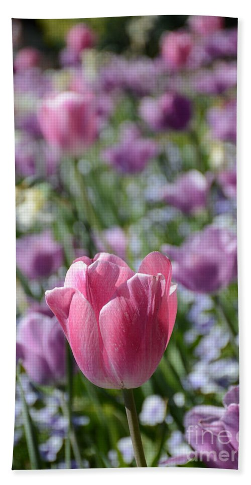Tulip Hand Towel featuring the painting Joyful Tulip by Constance Woods