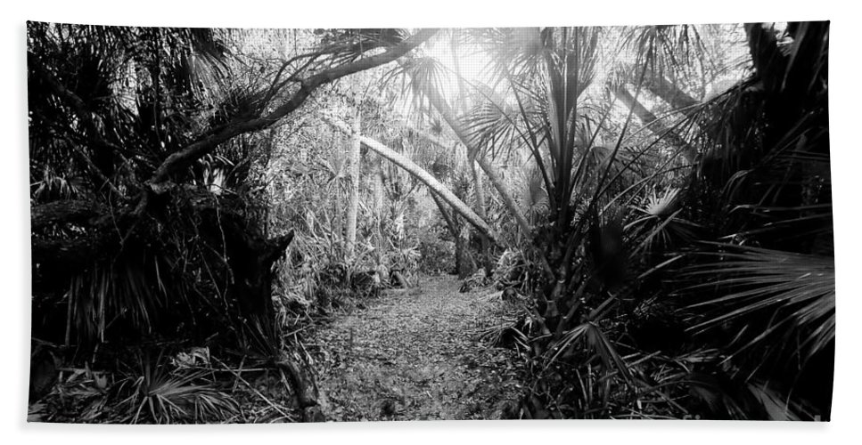 Jungle Bath Towel featuring the photograph Jungle Trail by David Lee Thompson