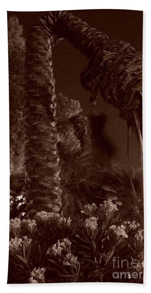 Sepia Hand Towel featuring the photograph Juraissic Palm Number 1 by Heather Kirk