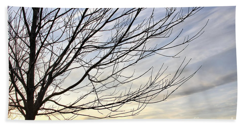 Sky Hand Towel featuring the photograph Just A Tree And Clouds by Deborah Benoit