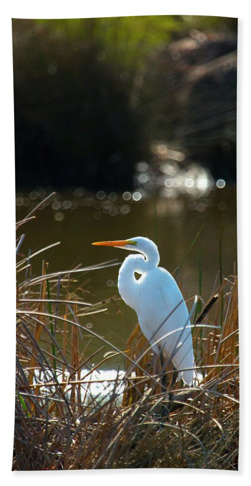 White Crane Bath Sheet featuring the photograph Just Chillin' by Susan Wright