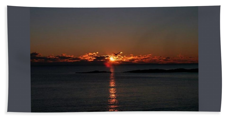 Hand Towel featuring the photograph Just Flying By by Diane Culleton