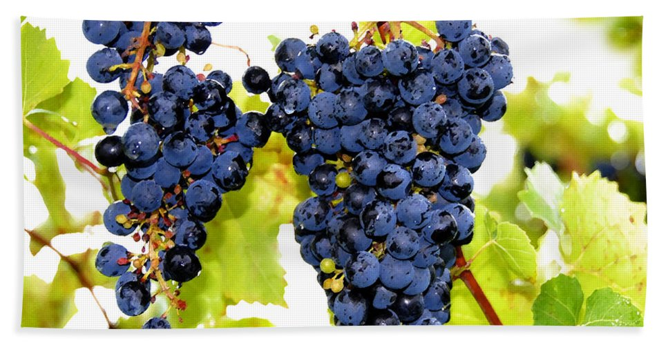Grapes Bath Sheet featuring the painting Just Ripe by David Lee Thompson
